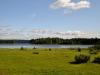 zweden-10-juni-Medium