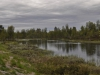 zweden-12-juni-28-Medium