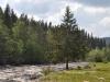 zweden-6-juni-19-Medium
