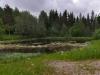 zweden-9-juni-13-Medium